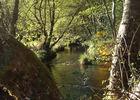 Camping Moulin de lacombe - Saint Geniez (7)