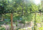 Camping Le Terriol Cajarc9