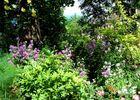 ChHotesDuJardinDeLaRaze-jardin_Collonges