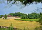 Château Lacapelle-Cabanac - Chai_09 © Lot Tourisme - C. ORY