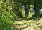 Chemin en sous bois_© Lot Tourisme - A. Leconte