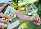 Dégustation de vins - Clos Triguedina_16 © Lot Tourisme - C. ORY