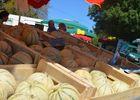 Foire du Dégagnazès - Melons