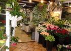 Gentil Flore - beaulieu - commerce