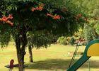 LaMarguerite-Monceaux_jardin
