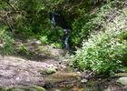 Latouille-Lentillac - Cascade ruisselant_14 © Lot Tourisme - C. Sanchez