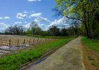 Les tuileries - Passage entre les vignes et le Lot © Lot Tourisme - C. Sanchez