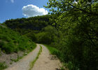 Mages - chemin dans la vallée de l'Ouysse_04 © Lot Tourisme - C. Sanchez