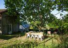 MaisonDesEtoiles-Casastelle-Noailhac_jardin