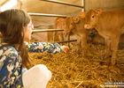 N°2 AGRI RANDO EN CORREZE VALLEE DE LA DORDOGNE- ESCAPADE FERMIERE