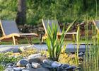 Piscine naturelle esprit zen © Hameau du Quercy -001