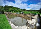 Pisciculture du Moulin de Guiral - Montredon_10 © Lot Tourisme - C. ORY