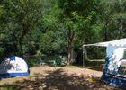 Soleil d Oc - monceaux-sur-Dordogne - Emplacement camping bord de Dordogne