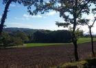 Terres cultivées - paysages du Limargues_09 © Lot Tourisme - A. Leconte