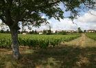 Sauzet - Vue du Village