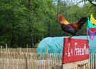 camping-coq-rouge-Colonges -mini-ferme-2