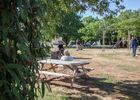 camping-ferme-des-campagnes-Rocamadour-Jeux