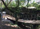 cabane-Lodge- pont de singe