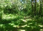 Sentier des argiles - Cambes