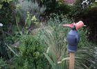 jardin la millerette