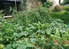 Castagnere-Jardin-2-4