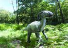 Dinosaures-parc-Azur-parasaurolophus
