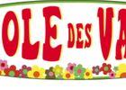 Ecole-des-Vagues-a-Bidart
