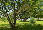 Gîte Domaine Pédelaborde - Parc (Odile Civit)