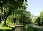 Bois de Goes-Précilhon