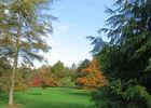 Jardin du Clos Saint Saturnin - 1