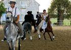 Les Ecuries des Chênes - Le Vézier