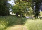 Parc-Chateau-de Cirey sur Blaise - Lac du Der