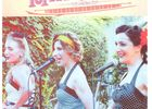 Concert Les Doré Minettes