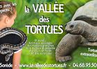 VALLEE DES TORTUES 2019