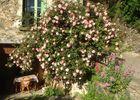 la maison des roses5