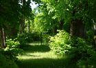 Jardin du château des Gringuenières
