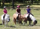 equitation-poney6-ffe-psv-reduite