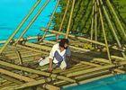 film-animation-cannes-la-tortue-rouge-baugé-en-anjou