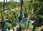 Feeling Forest