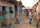 etrier-fontenaisien-centre-equestre-85200-fonenay-le-comte-6