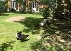 jardin_lapetitechatelaine_sainthilairederiez