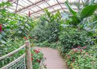 jardin-aux-papillons-morbihan-bretagne-sud-30