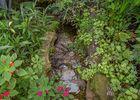 jardin-aux-papillons-morbihan-bretagne-sud-32