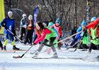 Ski hockey