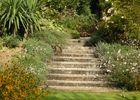 champagne 52 thonnance nature paysage jardins parcs et jardins mdt52 74.