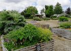 Le jardin médiéval à Bédée