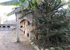 Centre équestre au lac de Trémelin à Iffendic (2)