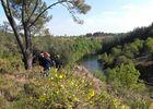 Forêt Iffendic chambre au loup domaine de Careil et boutavent ©office de tourisme Lac de Trémelin (2)