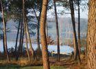 Lac de Trémelin à Iffendic