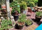 cote_jardin_maison_des_legendes_paimpont_-_2